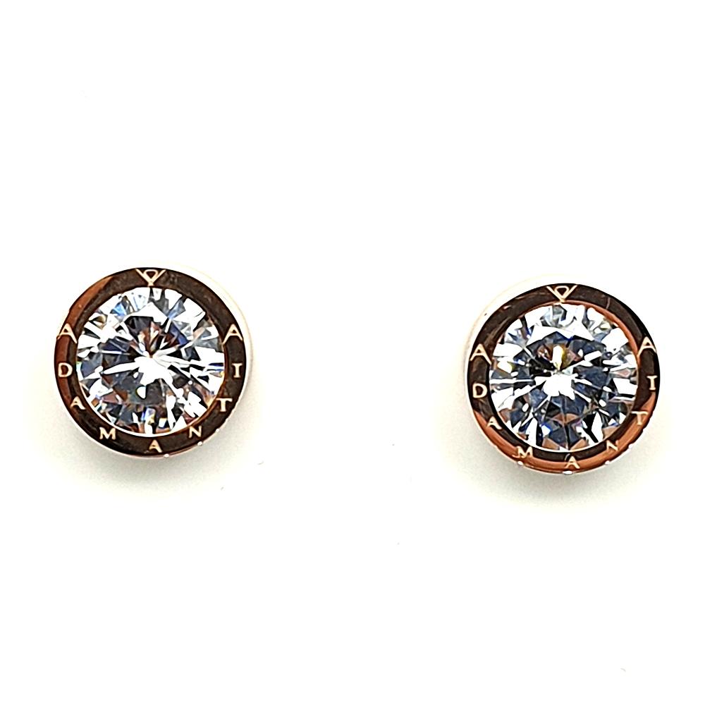 Earrings in acciaio.