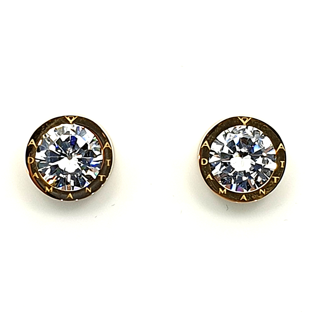 Earrings in acciaio.